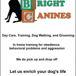 all_bright_canines