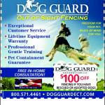 dog_guear_ctri
